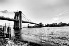 brooklyn bridge bw