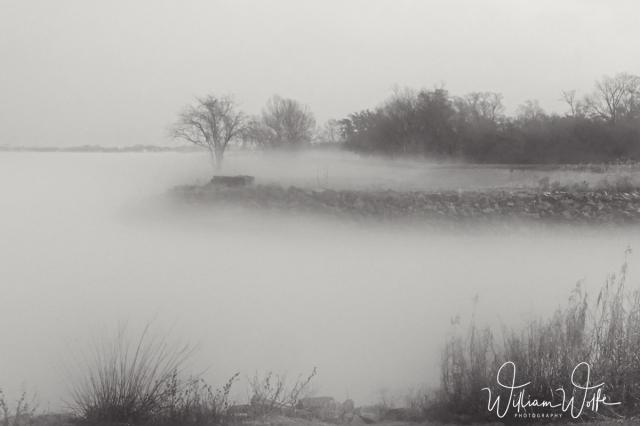 web foggy 002