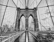 web b bridge bw