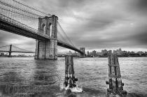 web brooklyn bridge 002
